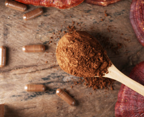 reasons to add reishi mushrooms to your diet